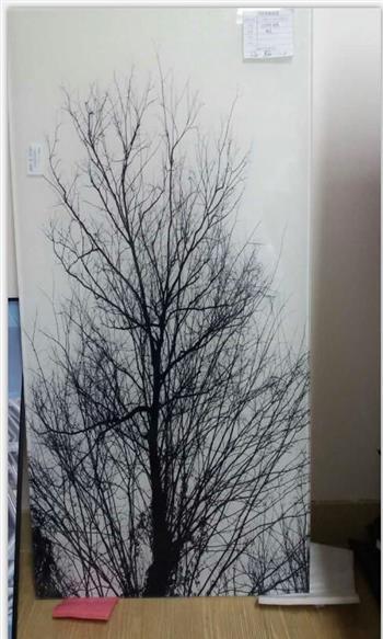 树枝夹胶玻璃